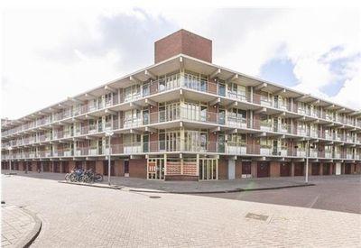 Amerbos, Amsterdam
