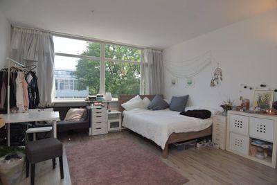 Hooilaan, Breda