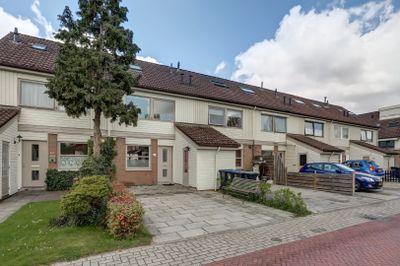Wittenstein 224, Dordrecht