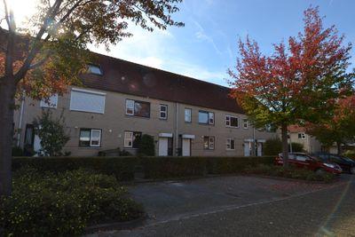 Kwarts 39, Zeewolde