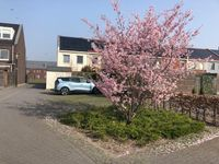Vlielandstraat 0-PVK 47, Breda