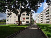 Gekroonde Haringpad 110, Rotterdam