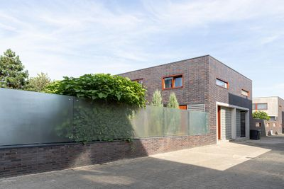 Blauw druifje 8, Papendrecht