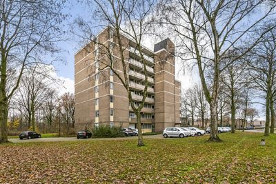 Papendonk 20, Oosterhout