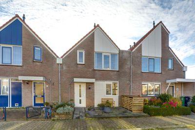 Cypres 29, Hoorn
