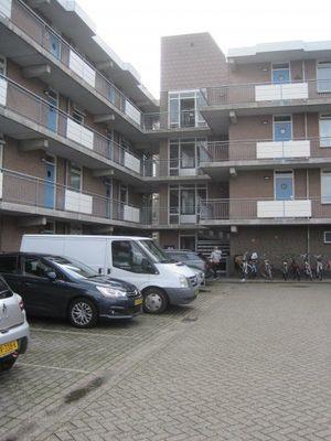 Majoraan, Oisterwijk