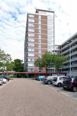 Wilgenplaslaan 270, Rotterdam