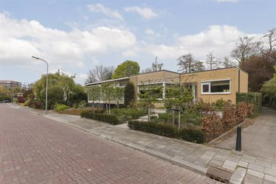Campanula 44, Dordrecht