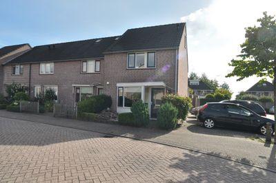 Meidoorn, Prinsenbeek