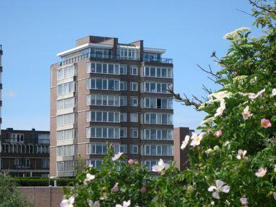 Groningsestraat 167-*, 's-gravenhage