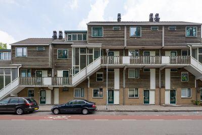 Albion 12, Haarlem