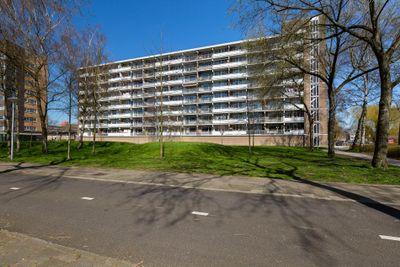 Lupinesingel 426, Alphen Aan Den Rijn