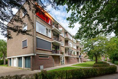 Stuart Millpad 83, Rotterdam