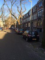 Blommersdijkselaan, Rotterdam
