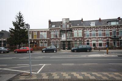 Hoge Rijndijk, Leiden