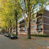 Muiderslotstraat, Tilburg