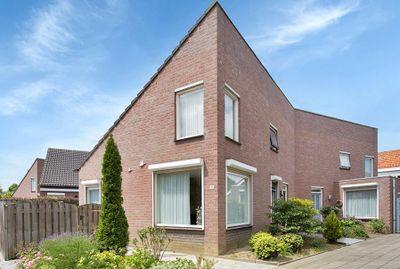 Boomkruiper, Boxmeer