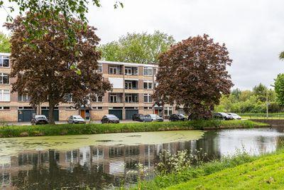 Witte de Withstraat 6, Papendrecht
