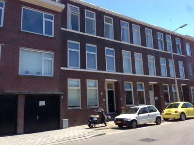 Duinstraat, Den Haag
