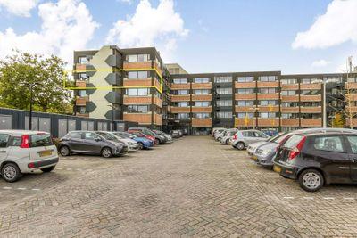 Zandsteen, Hoorn