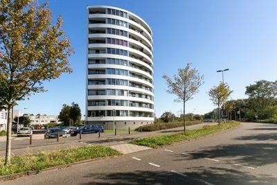 Tine van Dethstraat 49, Leiden