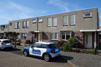 Akelei, Noordwijkerhout