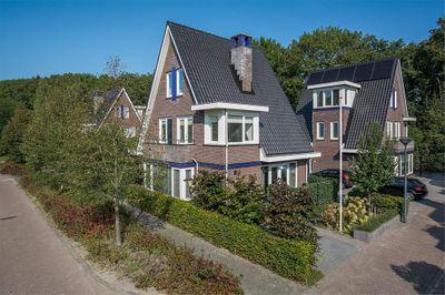 Dagpauwoog 32, Oosterhout