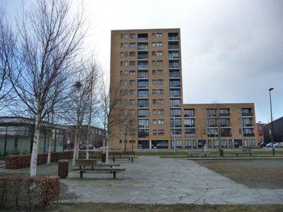Makassarhof, Almere