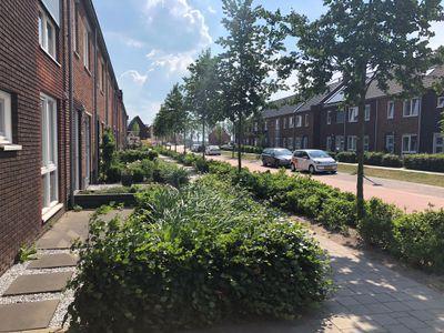 Waard, Kampen
