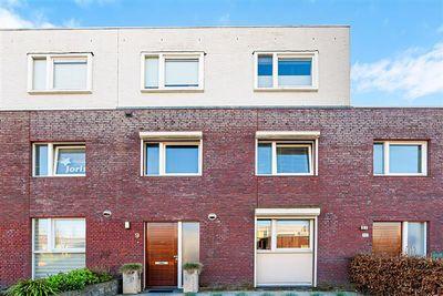 Zandroos 9, Eindhoven