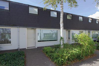 Zandtong 67, Eindhoven
