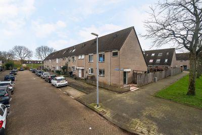 Beschoeiing 1, Hoogvliet Rotterdam
