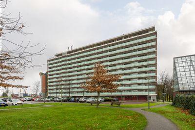 Vlaardingerdijk 336, Schiedam