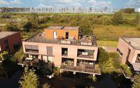Wetland 8, Lelystad