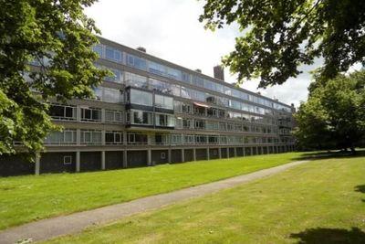 Barnsteenhorst, Den Haag