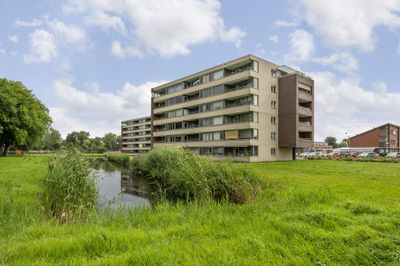 Lokkertsemolenweg 238, Hoogvliet Rotterdam