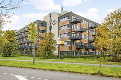 Zandsteen, Hoorn NH