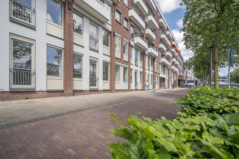 Stadsbrink, Wageningen