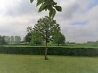 Langs de Groene Weg 14, Obbicht