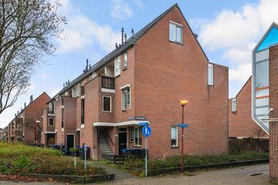Druivegaarde 41, Nieuwegein