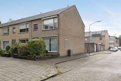 Ranonkelstraat 59, Oosterhout