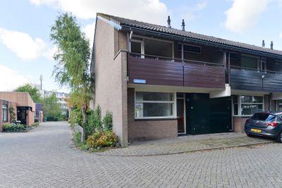 Braambes 2, Leiden