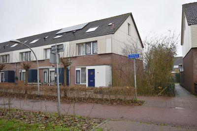 Punter 35 11, Lelystad