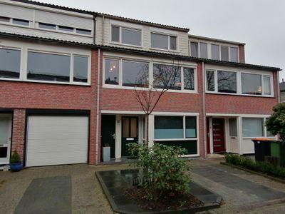 Baljuw 44, Hoorn