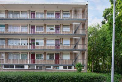 Schalkeroord 131, Rotterdam