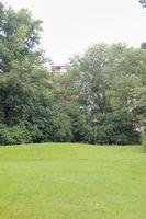 Marowijnedreef 47, Utrecht