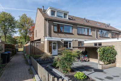 Waterman 12, Dordrecht