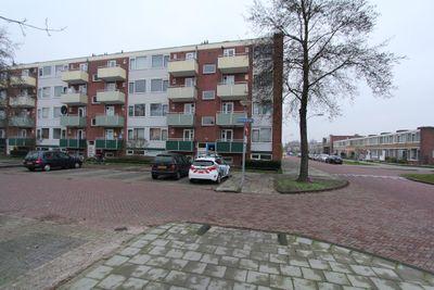 Reviusstraat, Hoogezand