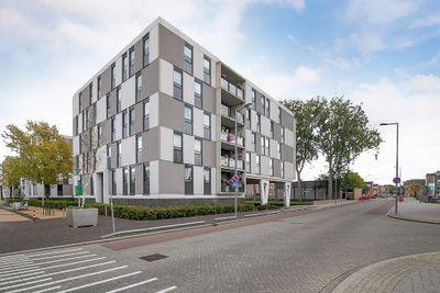 Plein 1953 272, Rotterdam