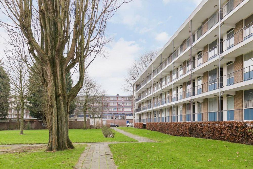 Ogierssingel, Rotterdam